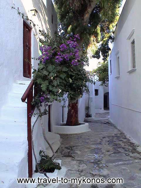 MONI TOURLIANIS - The picturesque paved alley that is leads in the buildings of the monastery.