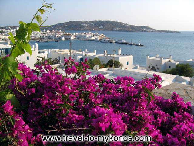 View of Mykonos chora from a room balcony CLICK TO ENLARGE